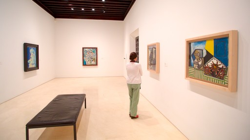 Picasso Museum Malaga which includes interior views and art as well as an individual femail