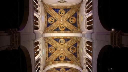 Cathédrale de Saint-Martin