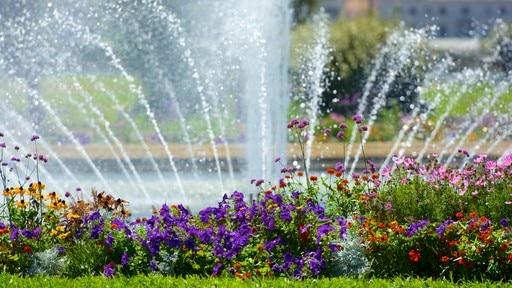 Parc Borely