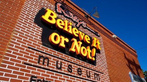 Ripley\'s Believe It or Not featuring signage