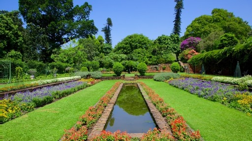 더반 식물원