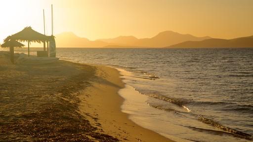 Strand van Tigaki