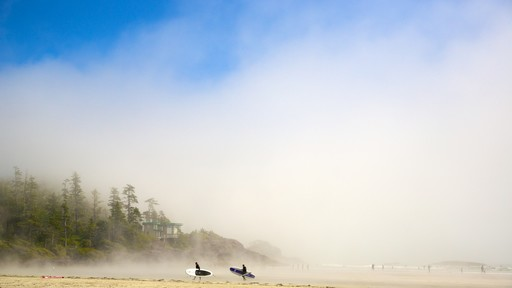 Mackenzie Beach featuring a sandy beach and mist or fog