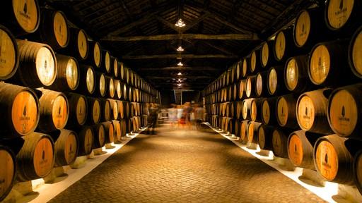 Sandeman Cellars (bodegas)