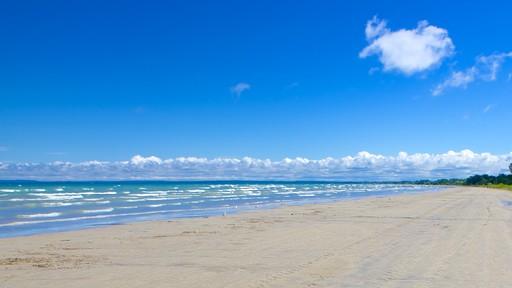 Wasaga Beach Provincial Park showing a sandy beach