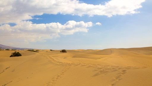 Maspalomas-sanddynene