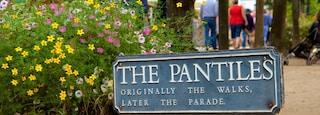 Pantiles featuring signage