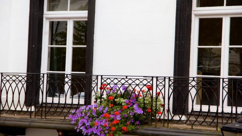 Pantiles which includes flowers