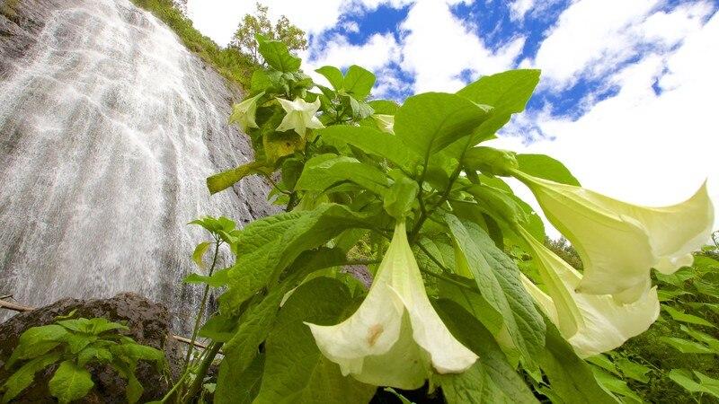 Le Voile de la Mariee (cascata)
