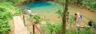 Blue Hole National Park showing tranquil scenes and a lake or waterhole as well as a small group of people