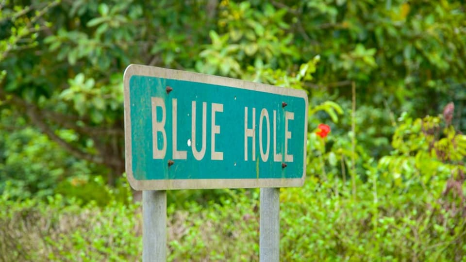 Blue Hole National Park which includes signage and forests