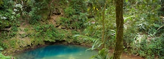 Blue Hole National Park featuring a lake or waterhole and rainforest