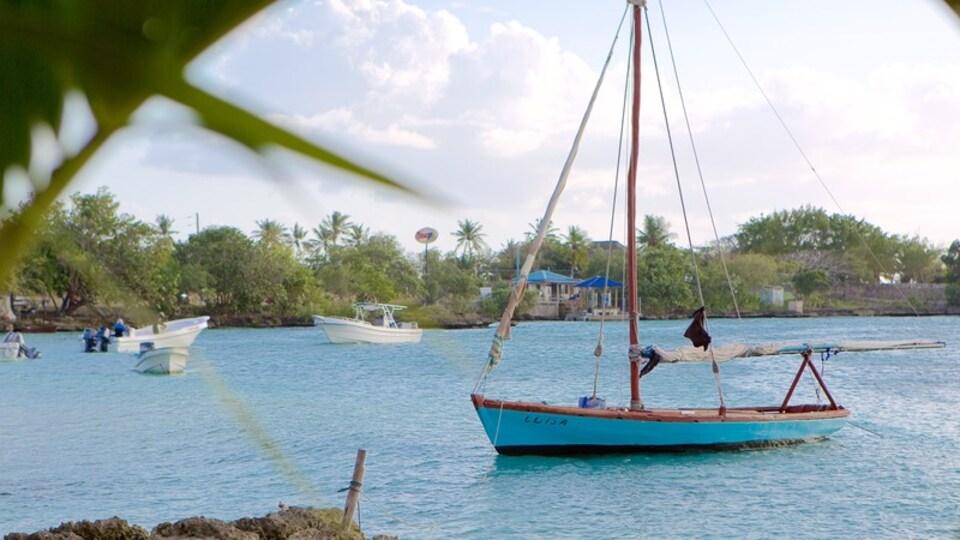 Bayahibe Beach showing general coastal views