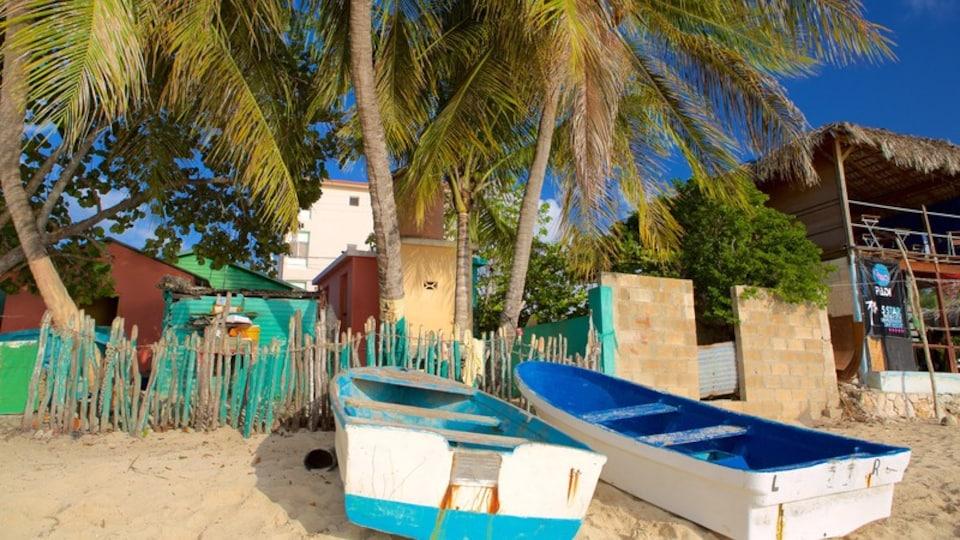 Bayahibe Beach featuring general coastal views