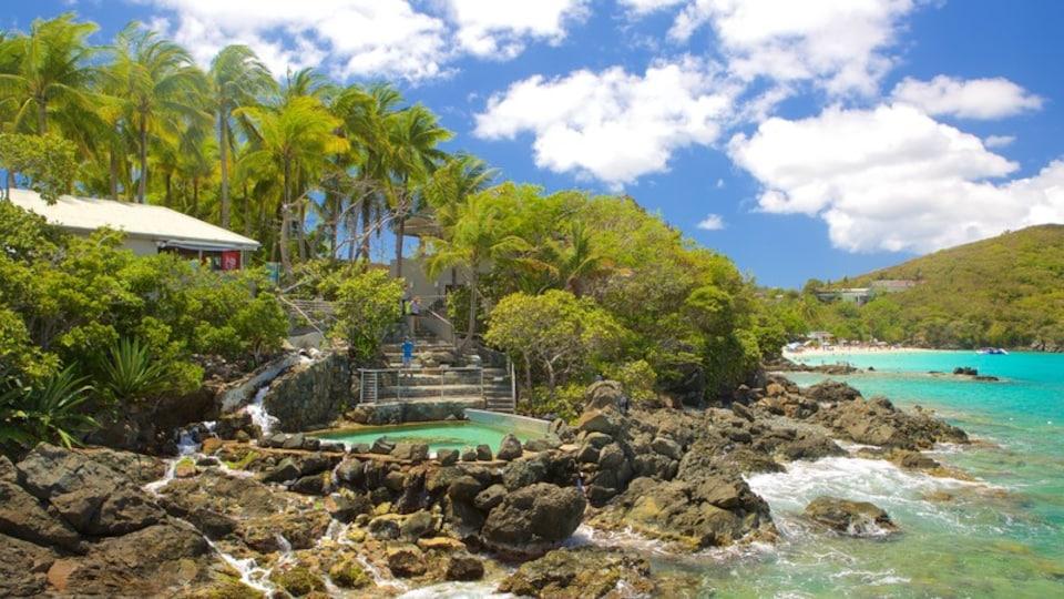 Coral World Ocean Park featuring marine life and general coastal views