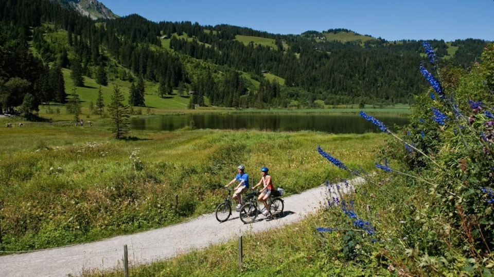 Gstaad featuring cycling, a pond and tranquil scenes
