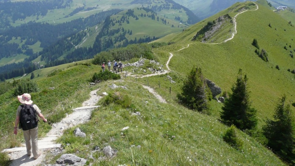Gstaad showing tranquil scenes and hiking or walking