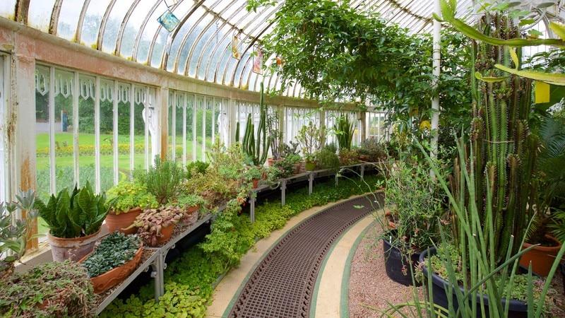 Botanische tuinen van Belfast