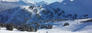 Marmot Basin showing snow skiing, landscape views and mountains