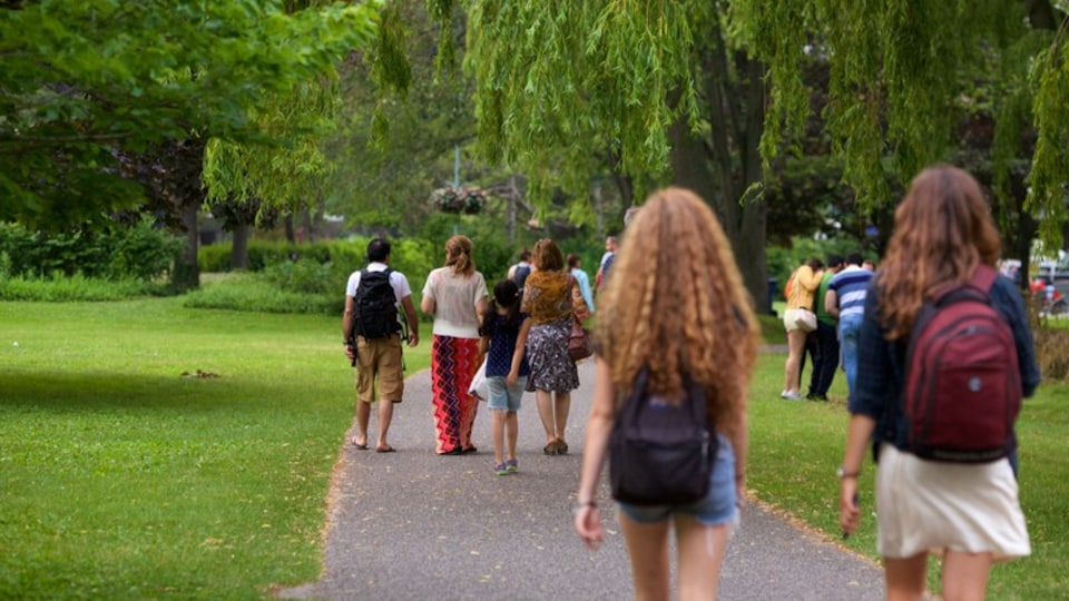 Toronto Islands which includes a garden as well as a small group of people
