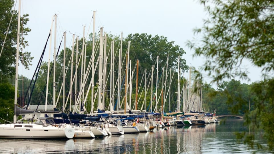 Toronto Islands showing a river or creek, a marina and boating
