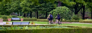 Toronto Islands showing a garden and cycling as well as a small group of people