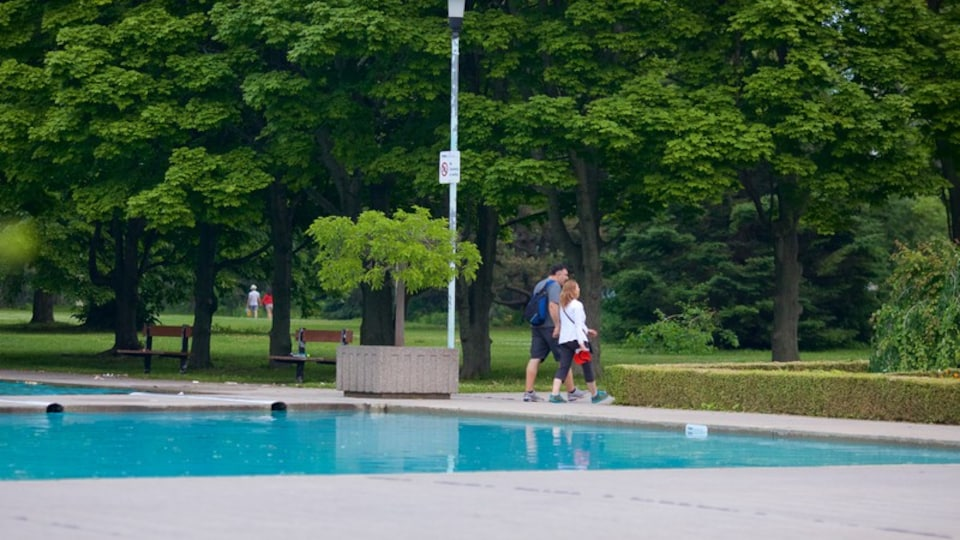 Toronto Islands which includes a pond and a garden as well as a couple