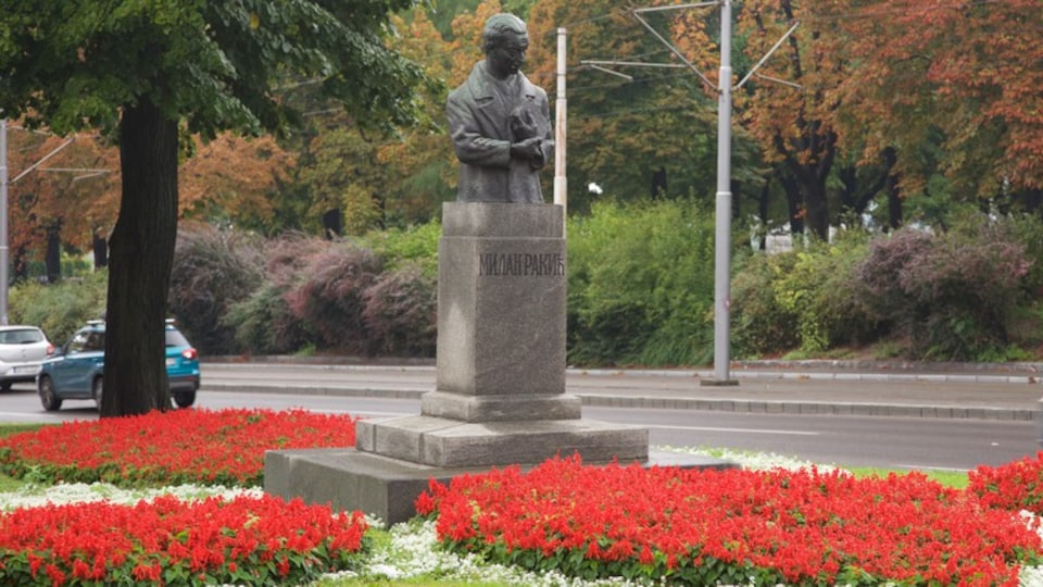 Kalemegdan Park showing a park, a monument and flowers