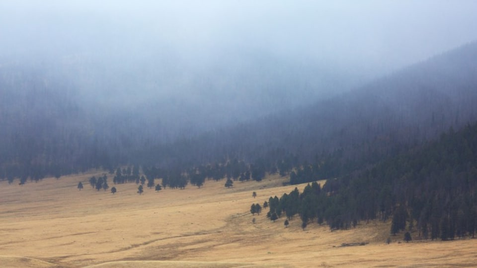 Jemez Springs which includes mist or fog, farmland and mountains