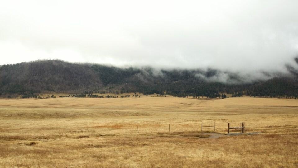 Jemez Springs showing mist or fog and farmland