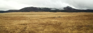 Valles Caldera National Preserve which includes tranquil scenes, mist or fog and landscape views