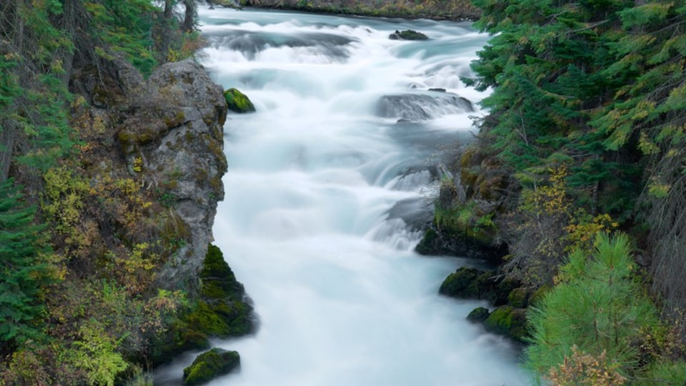 Deschutes National Forest which includes rapids