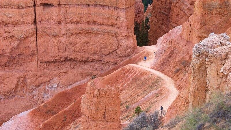 Navajo Trail