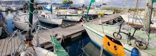 Raiatea Marina featuring a bay or harbor and sailing