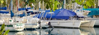 Raiatea Marina which includes sailing, boating and a bay or harbor