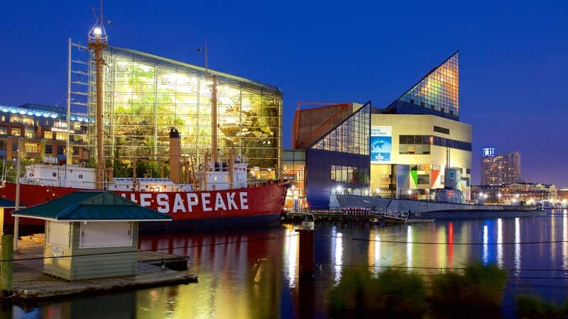 National Aquarium in Baltimore featuring modern architecture and night scenes