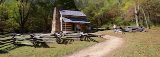 Cades Cove showing forest scenes, a house and tranquil scenes