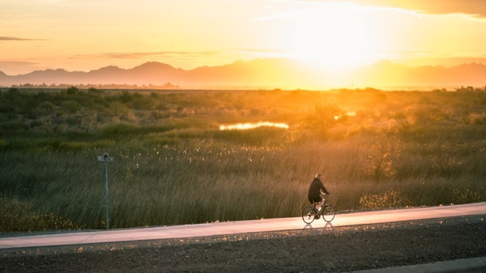 Yuma featuring a sunset, cycling and tranquil scenes