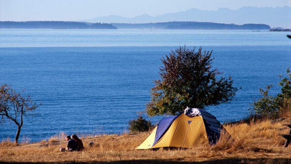 Salt Spring Island showing a bay or harbor, island images and camping