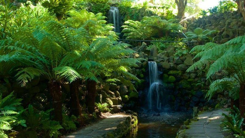 Royal Botanic Gardens which includes a cascade and a garden