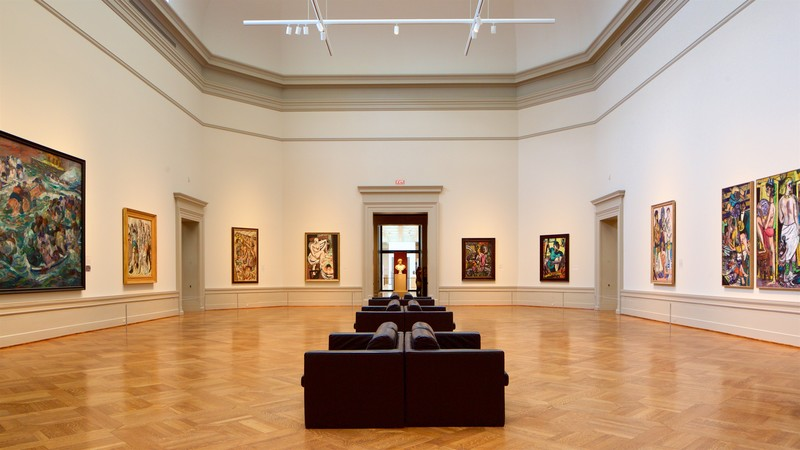 St. Louis Art Museum showing art and interior views