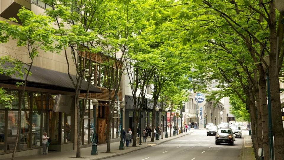 Downtown Seattle showing street scenes and a city