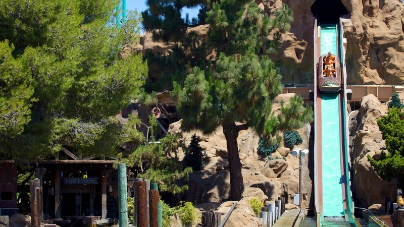 Knott\'s Berry Farm which includes rides