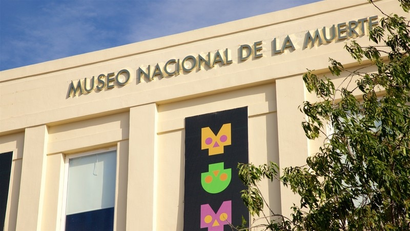 Museo Nacional de la Muert