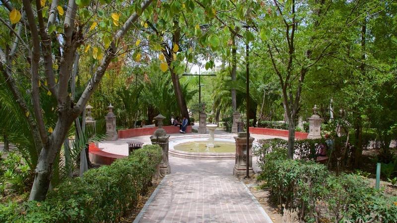 Juarez Park