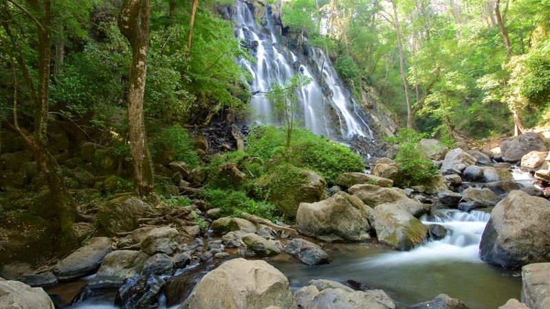 Velo de Novia Waterfalls