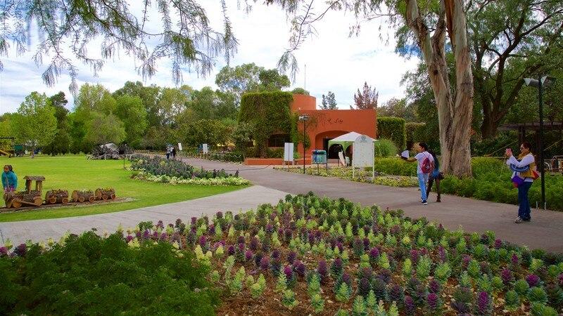Fotos de parques y jardines ver im genes de tlalnepantla for Parques y jardines fotos