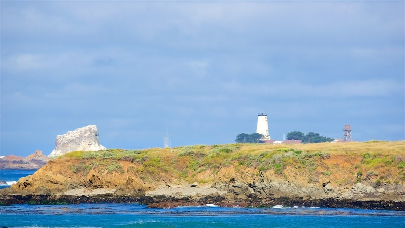 Piedras Blancas Lighthouse (phare)