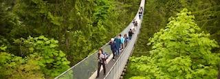 Capilano Suspension Bridge featuring hiking or walking, a suspension bridge or treetop walkway and landscape views
