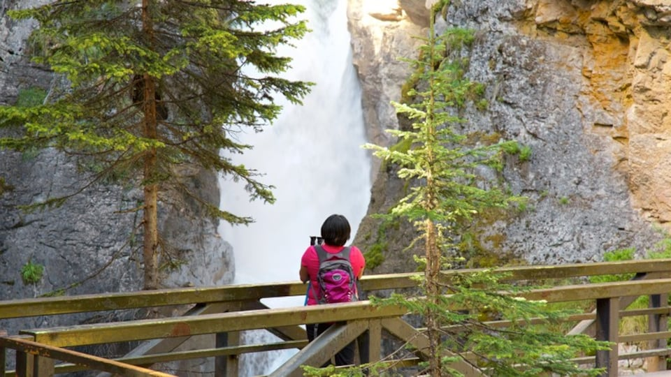 Johnston Canyon which includes a cascade as well as an individual femail